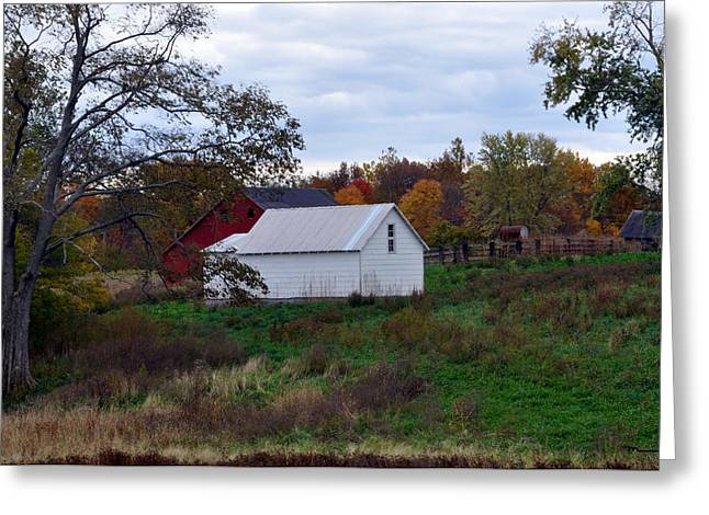 Indiana Autumn Greeting Cards - Fountain County Indiana Greeting Card by Marsha Williamson Mohr