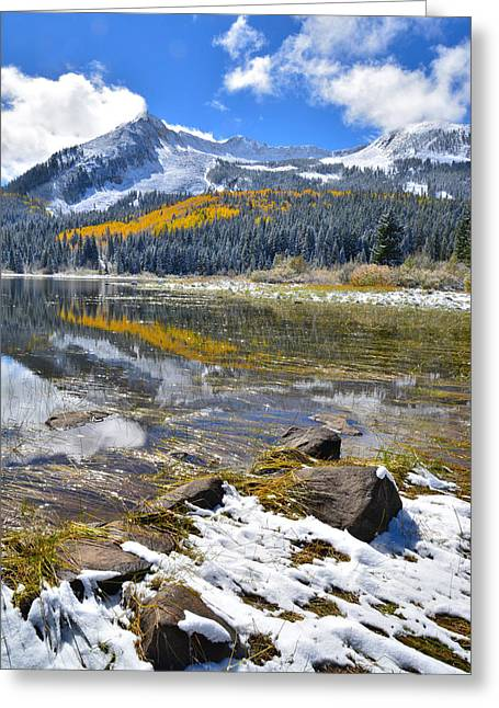 Lost Lake Greeting Cards - Kebler Pass Fall Colors Greeting Card by Ray Mathis