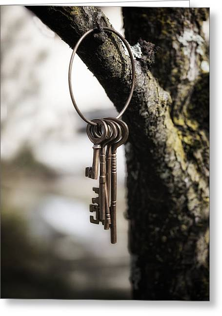 Tree Outside Greeting Cards - Keys Greeting Card by Joana Kruse
