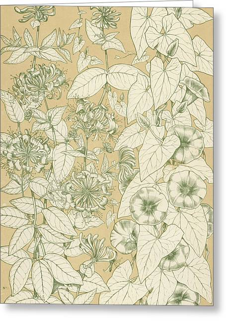 Garden Drawings Greeting Cards - Leaves from Nature Greeting Card by English School