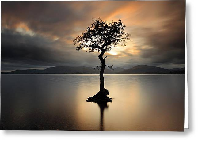 Reflection In Water Greeting Cards - Loch Lomond Sunset Greeting Card by Grant Glendinning
