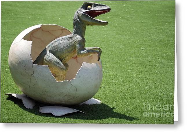 Velociraptor Greeting Cards - Model Dinosaur Greeting Card by PhotoStock-Israel