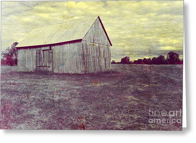 Architecture Textured Art Greeting Cards - Old Barn Greeting Card by Sophie Vigneault