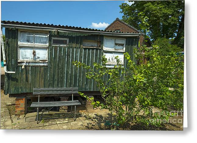Limburg Greeting Cards - Old shed in a sunny garden in spring Greeting Card by Jan Marijs