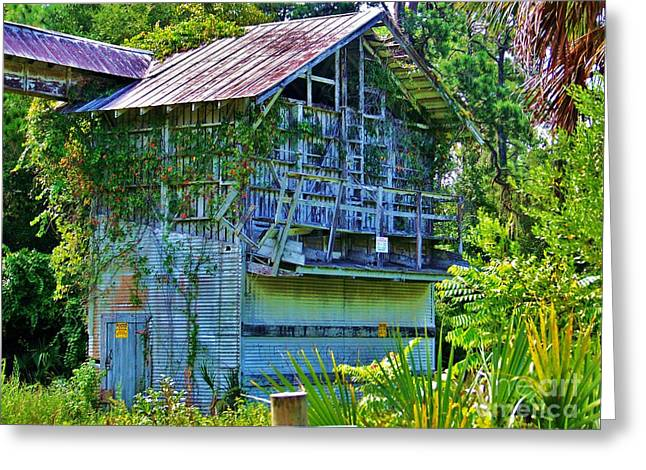 Tin Roof Greeting Cards - Orange Packing Plant Greeting Card by Chuck  Hicks