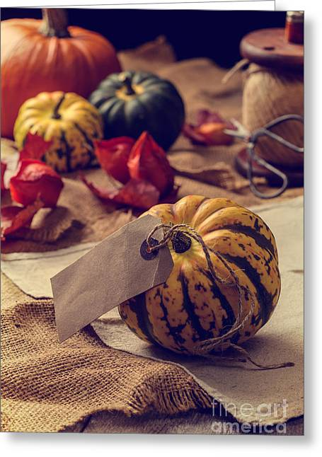 Label Greeting Cards - Pumpkins Greeting Card by Amanda And Christopher Elwell