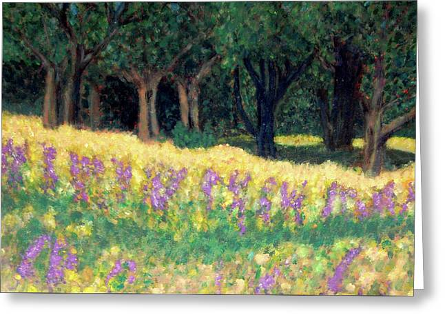 Carolyn Donnell Greeting Cards - Texas Gold Greeting Card by Carolyn Donnell