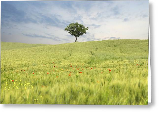 Pienza Greeting Cards - Tuscany - Val dOrcia Greeting Card by Joana Kruse