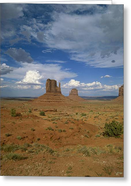 Usa, Arizona, Monument Valley, Navajo Greeting Card by Tips Images