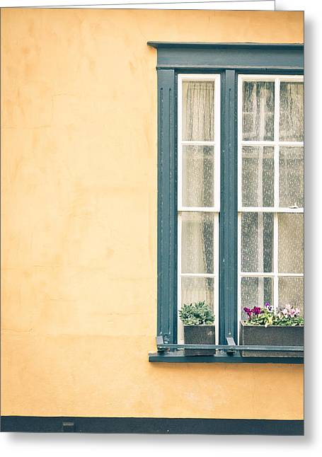 Trough Greeting Cards - Window  Greeting Card by Tom Gowanlock