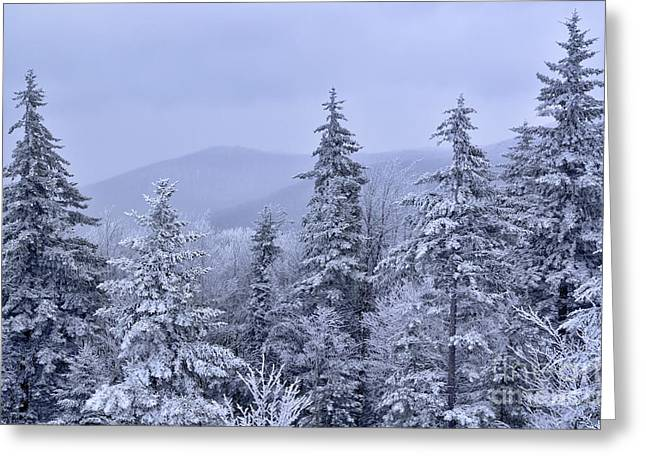 Allegheny Greeting Cards - Winter Highland Scenic Highway Greeting Card by Thomas R Fletcher