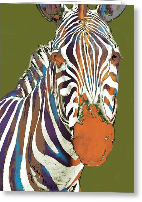 Pop Mixed Media Greeting Cards - Zebra - stylised drawing art poster Greeting Card by Kim Wang