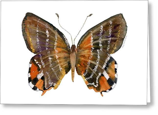 Orange And Brown Wings Paintings Greeting Cards - 60 Euselasia Butterfly Greeting Card by Amy Kirkpatrick