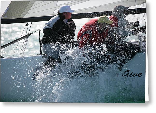 Midwinter Greeting Cards - Key West Race Week Greeting Card by Steven Lapkin