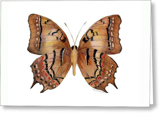 62 Galaxia Butterfly Greeting Card by Amy Kirkpatrick