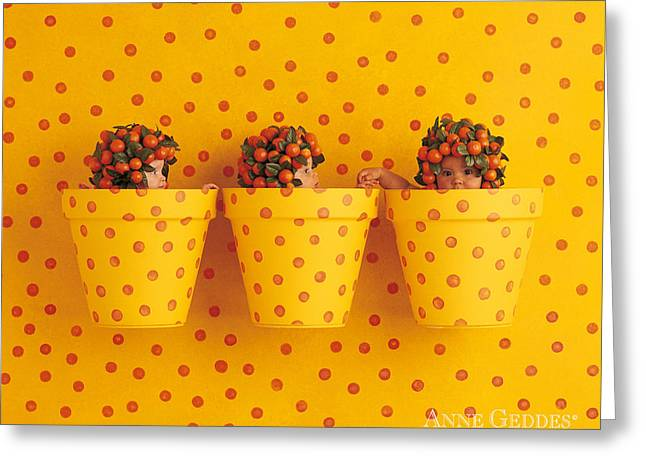 Fruits Photographs Greeting Cards - Untitled Greeting Card by Anne Geddes