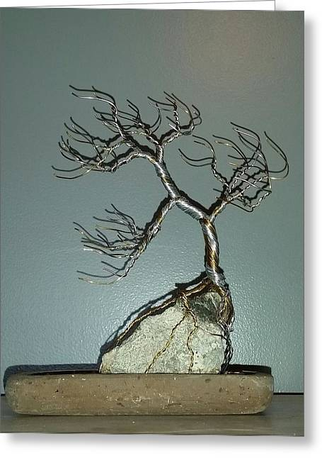 Silver Sculptures Greeting Cards - #63 Windswept Bonsai Tree root over rock Greeting Card by Ricks  Tree Art