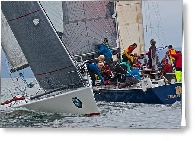 Penn Cove Greeting Cards - Whidbey Island Race Week Greeting Card by Steven Lapkin