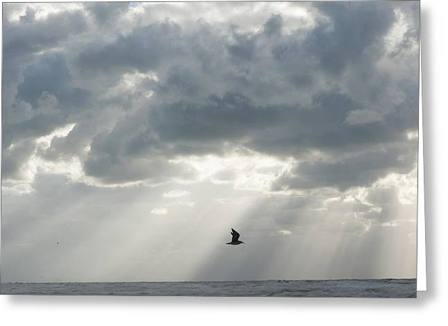 Ocean Art Photography Greeting Cards - 1 Greeting Card by Yaniv Eitan