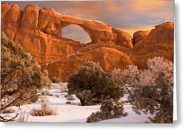 Slickrock Greeting Cards - Arches National Park Greeting Card by Utah Images