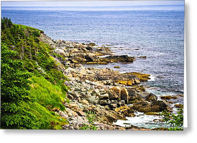 Atlantic coast in Newfoundland Greeting Card by Elena Elisseeva
