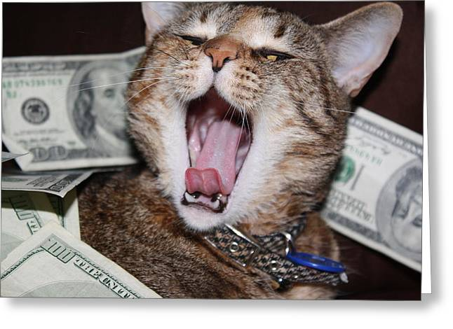I Love Money Greeting Cards - Cat Greeting Card by Bethany Lawson