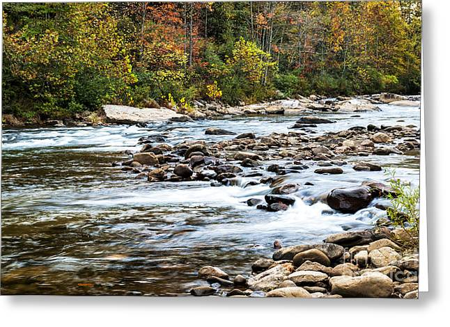 Nicholas Greeting Cards - Fall along Cherry River Greeting Card by Thomas R Fletcher