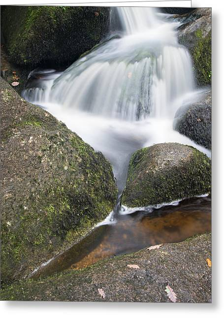 Becky Greeting Cards - Landscape of Becky Falls waterfall in Dartmoor National Park Eng Greeting Card by Matthew Gibson