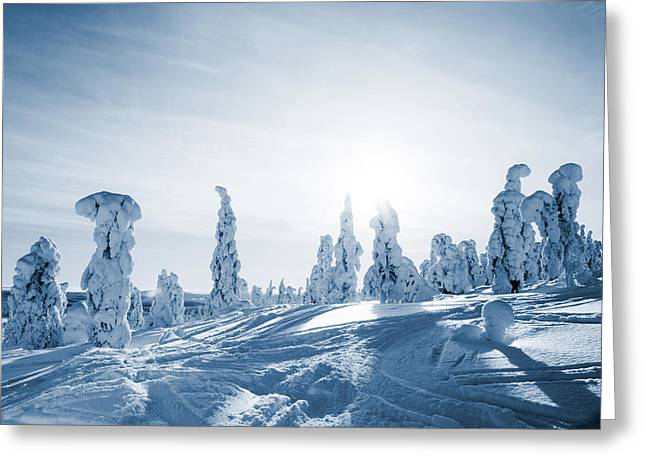 Snowy Day Greeting Cards - Lapland Finland Greeting Card by Kati Molin