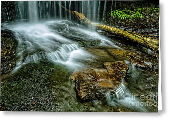 Allegheny Greeting Cards - Lin Camp Branch Waterfall Greeting Card by Thomas R Fletcher