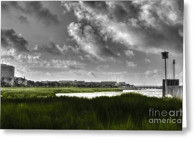 Black Greeting Cards - Lowcountry Marsh Greeting Card by Dale Powell