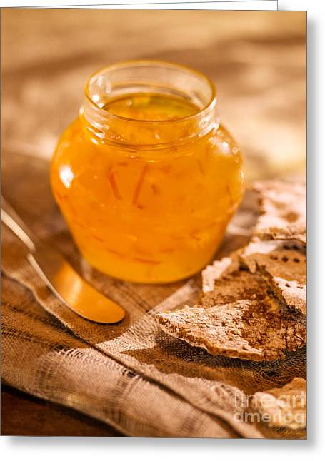 Owner Greeting Cards - Orange Marmalade Greeting Card by Iris Richardson