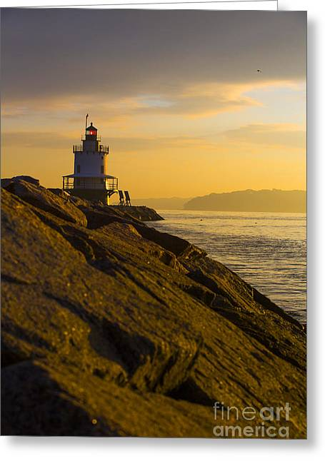 Maine Spring Greeting Cards - Sunrise at Spring Point Lighthouse Greeting Card by Diane Diederich