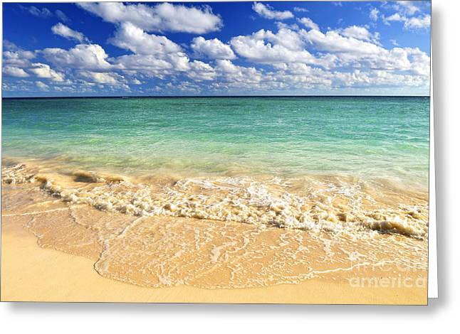 Beach View Greeting Cards - Tropical beach Greeting Card by Elena Elisseeva