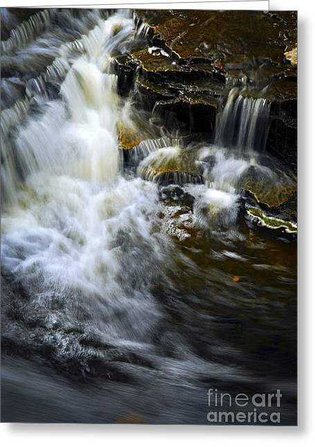 Rushing Water Greeting Cards - Waterfall Greeting Card by Elena Elisseeva