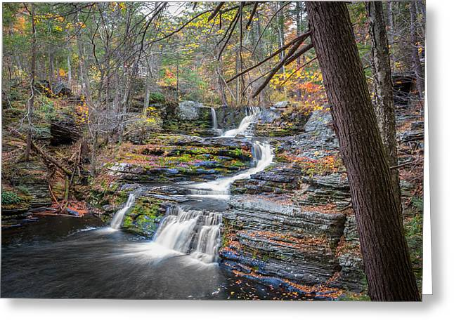 Dingmans Falls Greeting Cards - Waterfalls George W Childs National Park Painted   Greeting Card by Rich Franco