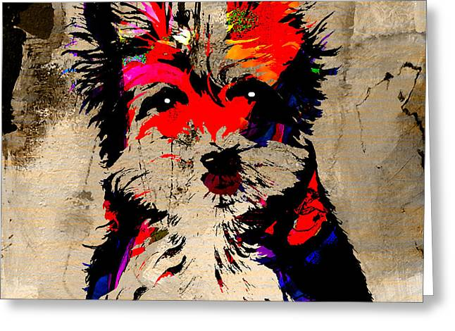 Animal Greeting Cards - Yorkshire Terrier Greeting Card by Marvin Blaine
