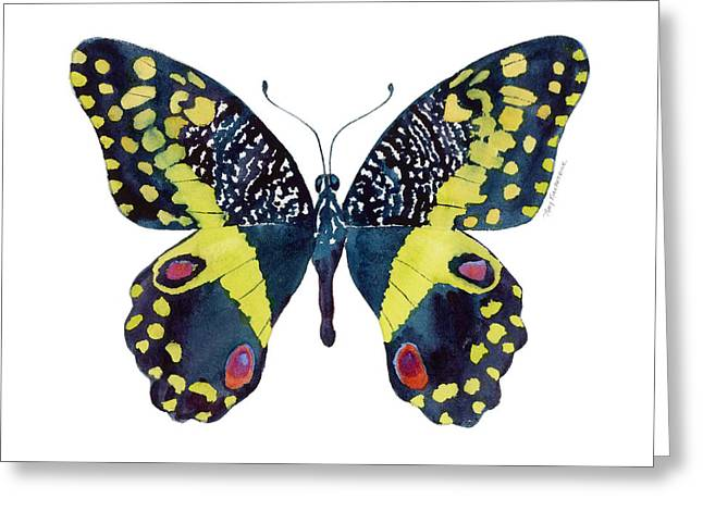 Background Paintings Greeting Cards - 73 Citrus Butterfly Greeting Card by Amy Kirkpatrick