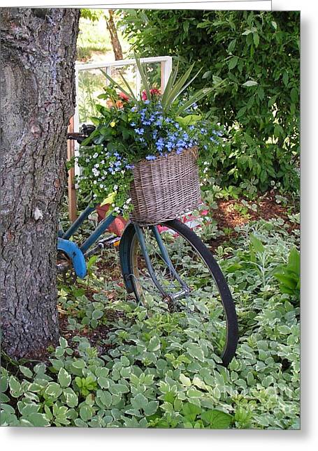 Tired Of Living Greeting Cards - #755 D45 Bike And A Basket of Flowers Greeting Card by Robin Lee Mccarthy Photography
