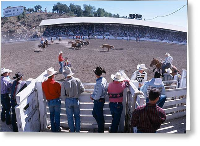 Roping Horse Greeting Cards - 75th Ellensburg Rodeo, Labor Day Greeting Card by Panoramic Images