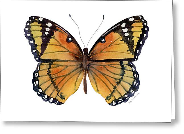 Orange And Brown Wings Paintings Greeting Cards - 76 Viceroy Butterfly Greeting Card by Amy Kirkpatrick