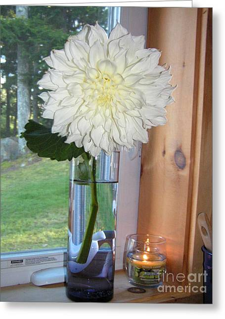 Glass Vase Greeting Cards - #763 D73 Dahlia in the Window Greeting Card by Robin Lee Mccarthy Photography