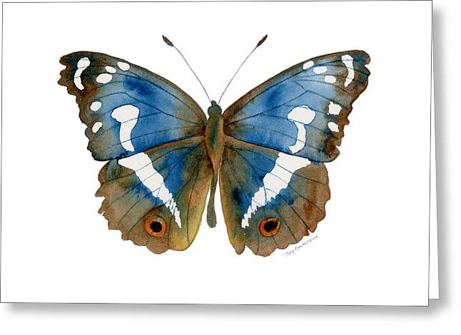 78 Apatura Iris Butterfly Greeting Card by Amy Kirkpatrick