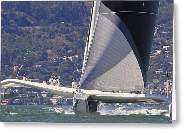 Sausalito Greeting Cards - San Francisco sailing Greeting Card by Steven Lapkin