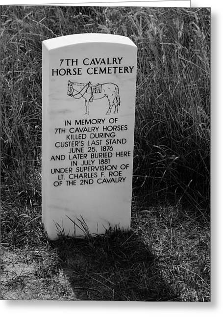 7th Army Greeting Cards - 7th Cavalry Horse Cemetery Greeting Card by Debra Martz