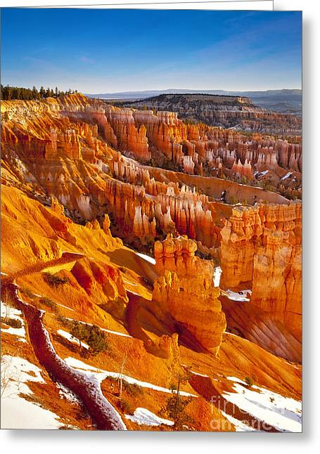 Bryce Canyon  Greeting Card by Brian Jannsen