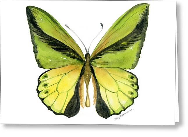Butterfly Paintings Greeting Cards - 8 Goliath Birdwing Butterfly Greeting Card by Amy Kirkpatrick