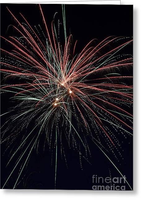 Independence Day Greeting Card by Matt  Davis