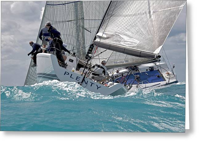 Sailboat Ocean Greeting Cards - Key West Regatta Greeting Card by Steven Lapkin