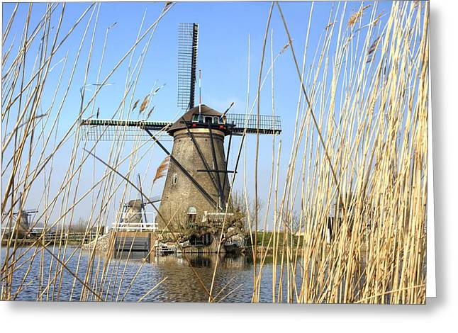 Gracht Greeting Cards - Kinderdijk Greeting Card by Joana Kruse